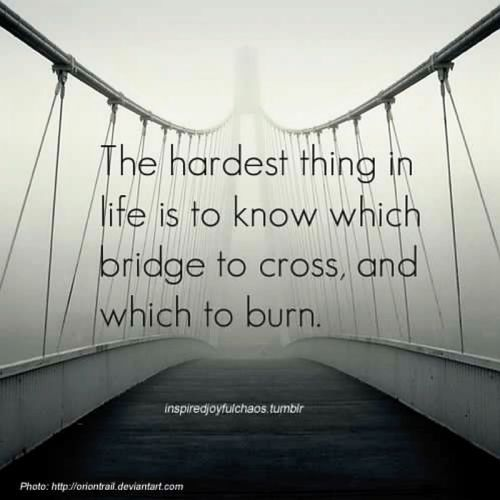 The Hardest Thing In Life Is To Know Which Bridge To Cross And