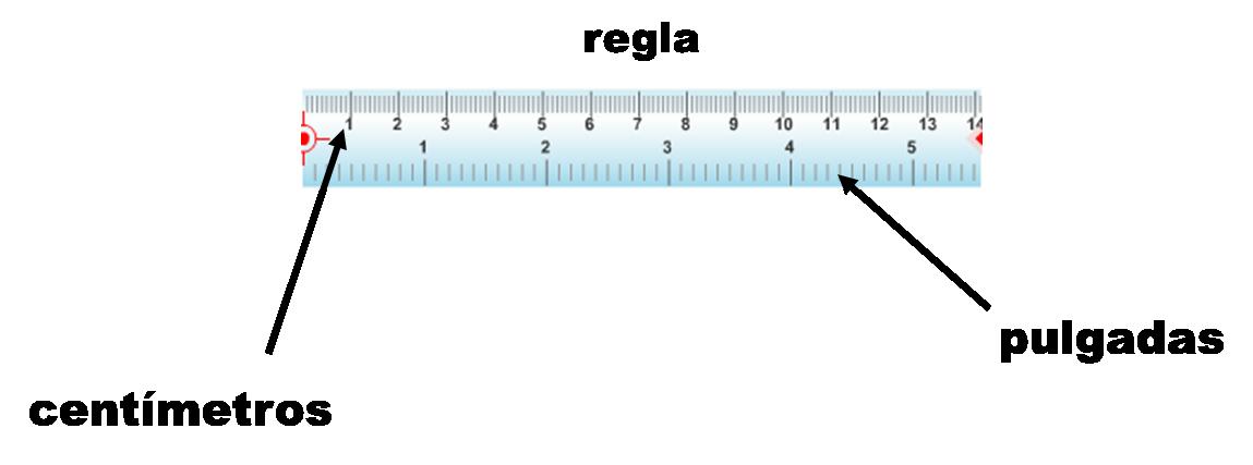 Regla Graduada En Centimetros Y Pulgadas Fuente Matematicasparaticharito Files Wordpress Com Chart Line Chart Montessori