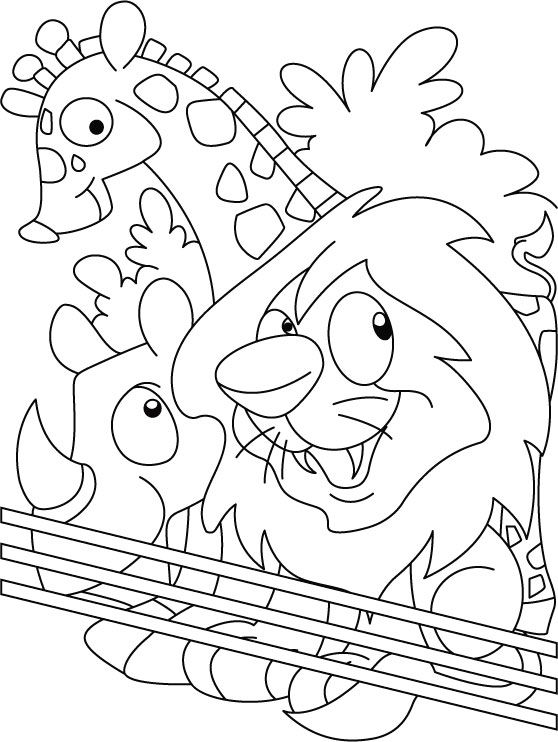 Zoo Coloring Page | Download Free Zoo Coloring Page For Kids | Best Coloring  Pages