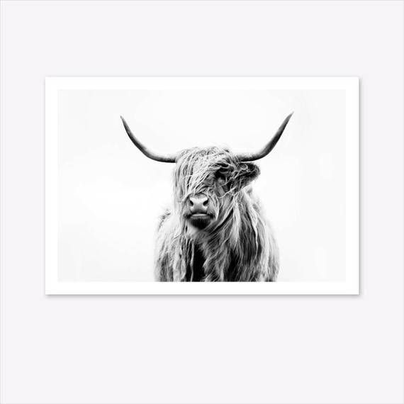 BILLY GOAT CANVAS PICTURE PRINT WALL ART FREE FAST UK DELIVERY