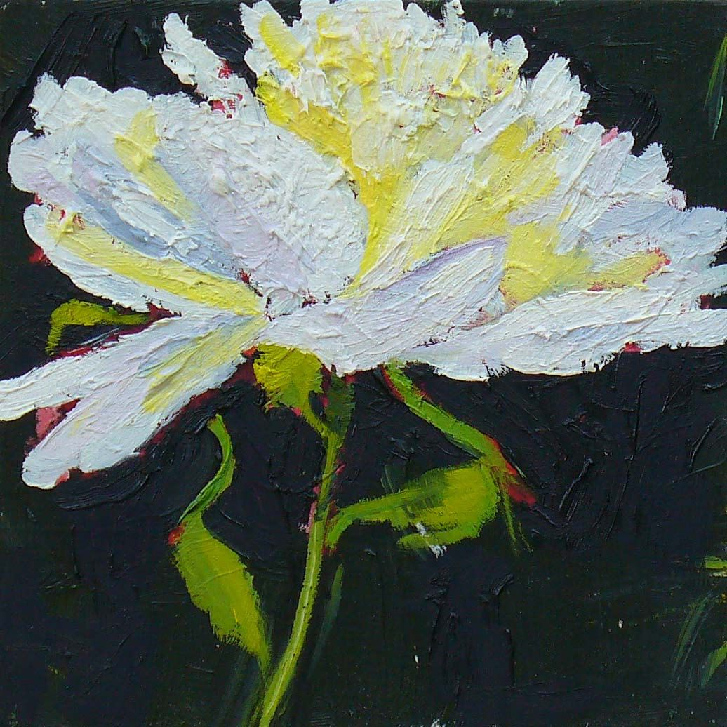 Flower Painting White Peony Original Small Oil Painting On Wood