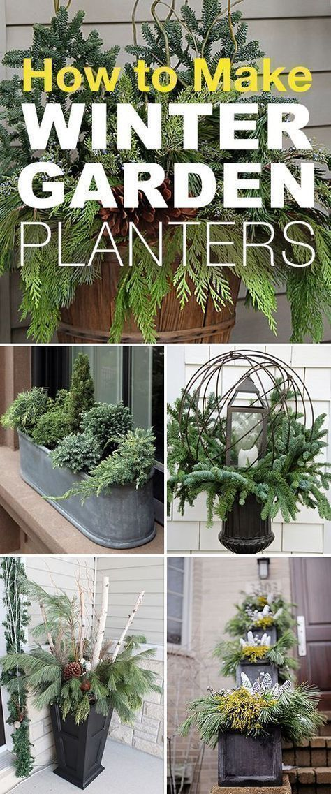 How To Make Winter Garden Planters! U2022 These Easy Winter Planter Ideas, Tips  And