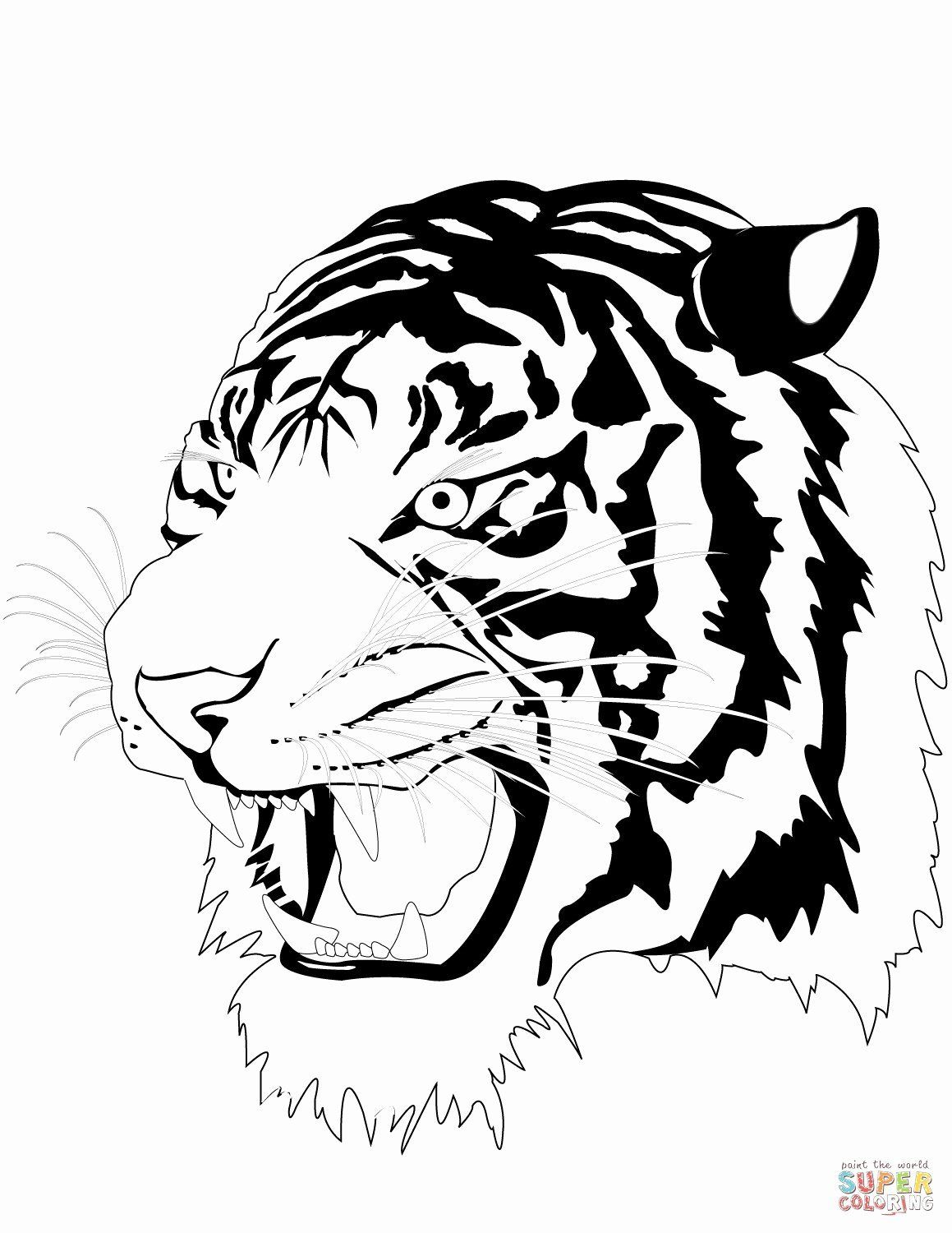 Cartoon Coloring Tiger In 2020 Animal Coloring Pages Shark