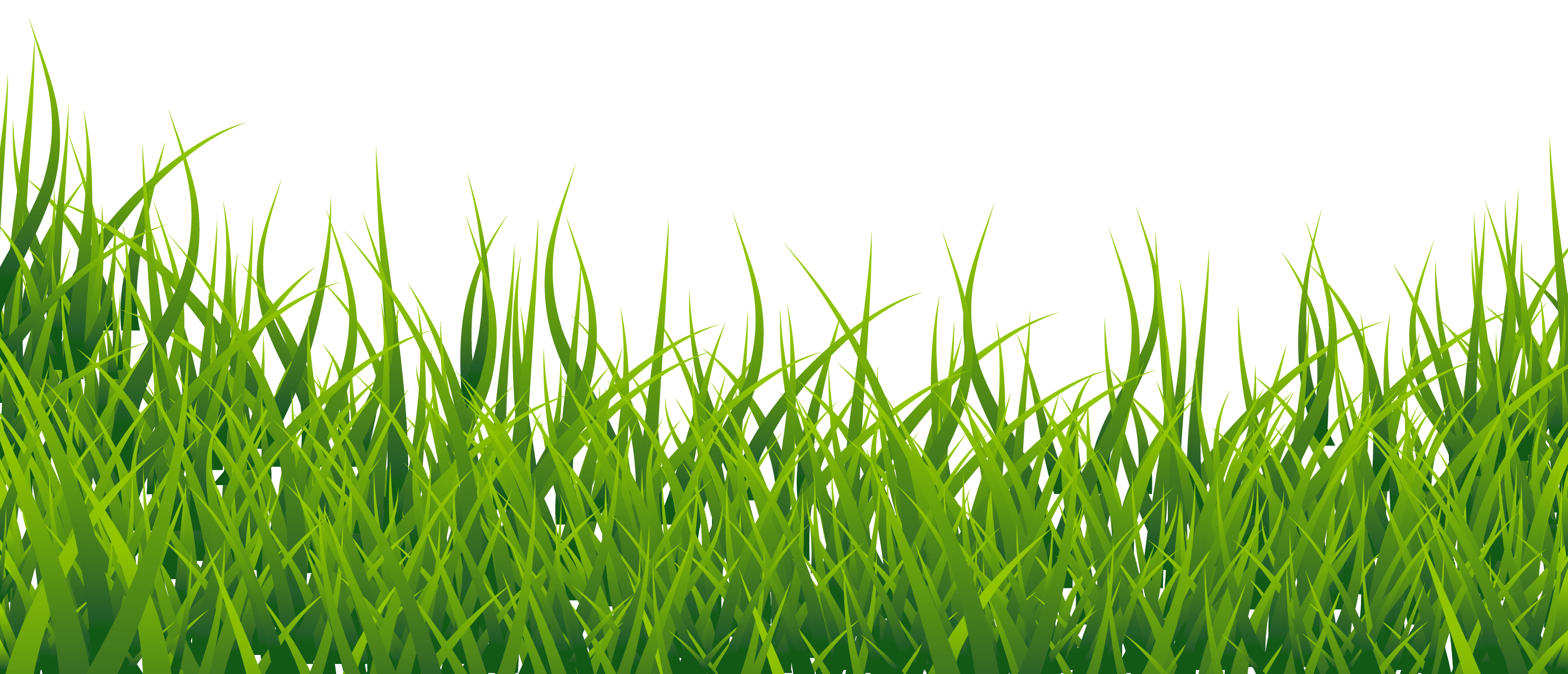 black and white google clipart black and white grass clipart grass vector  [ 2962 x 1274 Pixel ]