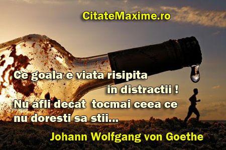 Citate Maxime Citatemaxime Ro Goethe Vons Quotes