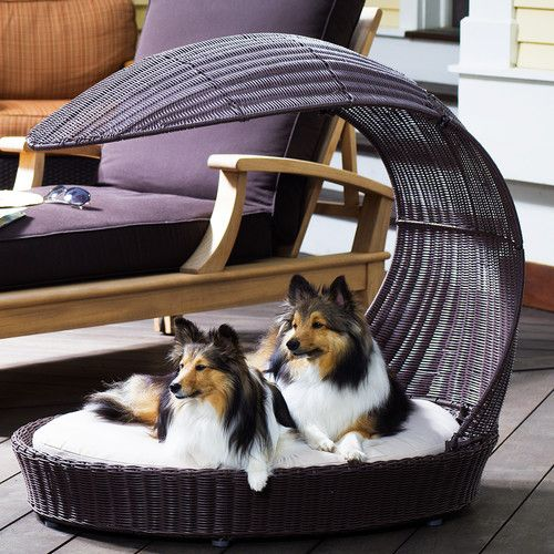 Found it at Wayfair - Outdoor Dog Chaise Lounge | dog | Pinterest ...