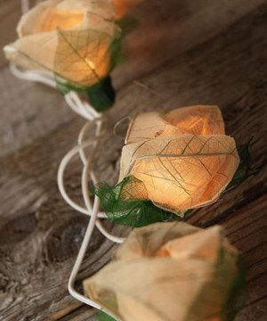 Another great find on #zulily! Bodhi Leaf Rose String Lights by Save On Crafts #zulilyfinds