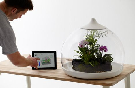 An iPhone/iPad controlled flora terrarium by Samuel Wilkinson promotes 'digital downtime'