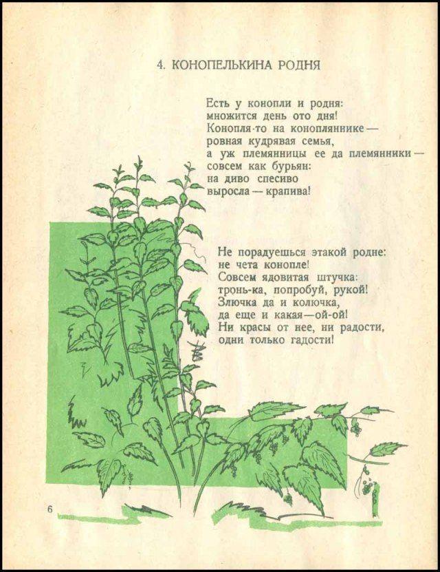 Стихотворение о конопле конопля семечка