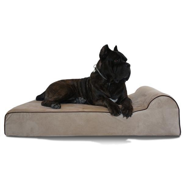 Buy Orthopedic Large Extra Large And Xxl Dog Beds Bullybeds Com Big Dog Beds Large Breed Dog Beds Orthopedic Dog Bed