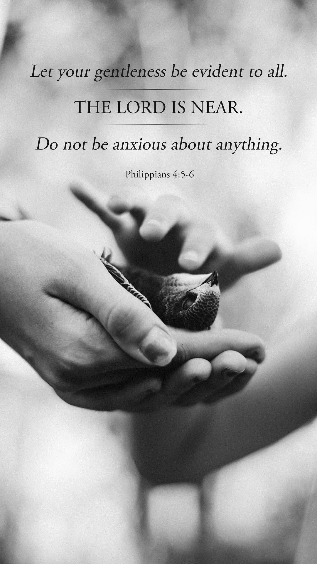 Rejoice in the Lord Always (Session One, Anxious for Nothing)