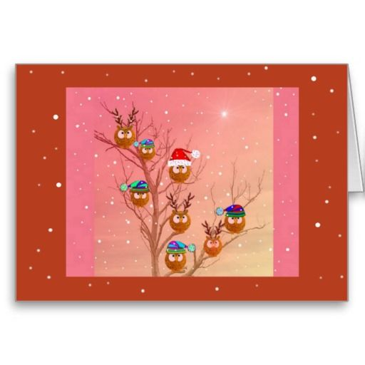Silly Owls Christmas cards Owls☼ Pinterest