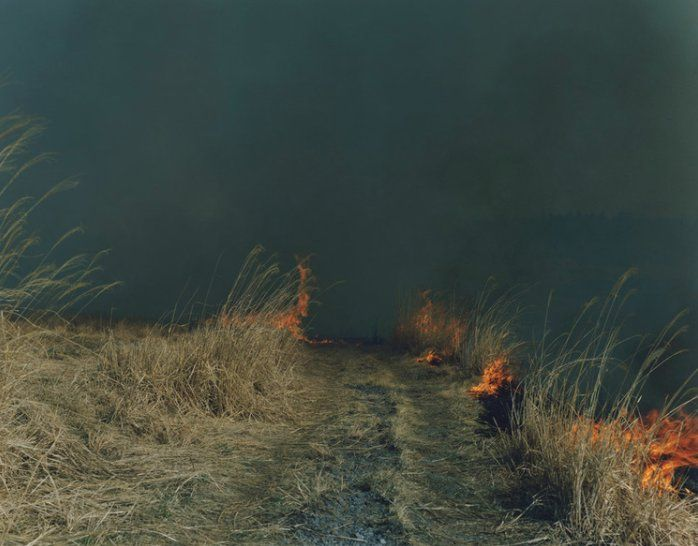 "Vincent Soulié on Twitter: ""〰  Rinko Kawauchi   川内倫子  ⎡  Series ~ Ametsuchi ~  2012⎦   5⎪5   ☞ https://t.co/KXmCs5C4VG https://t.co/PELOUoaPbn"""