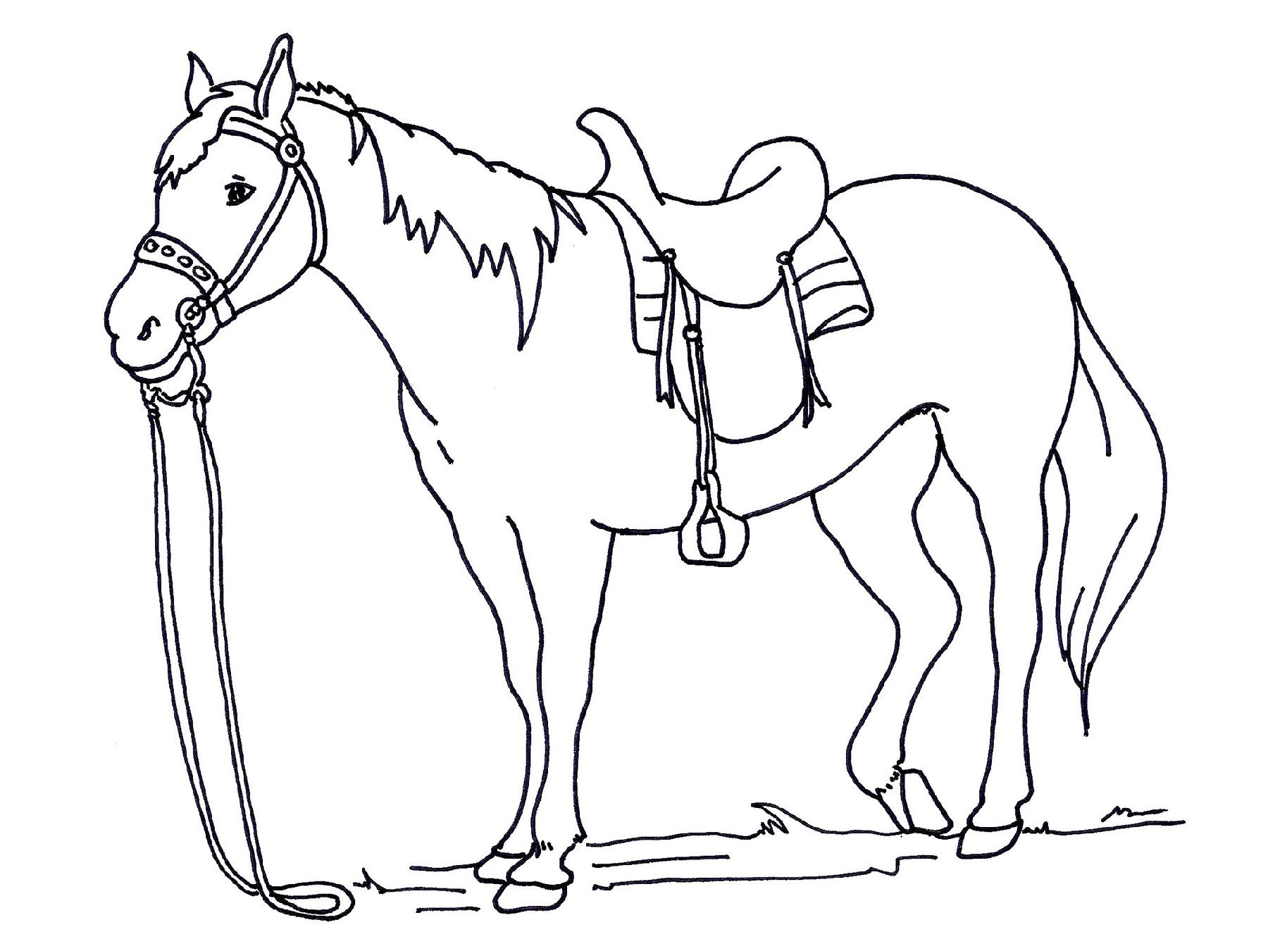 Horse Color Sheets For Kids Horse Coloring Horse Coloring Pages