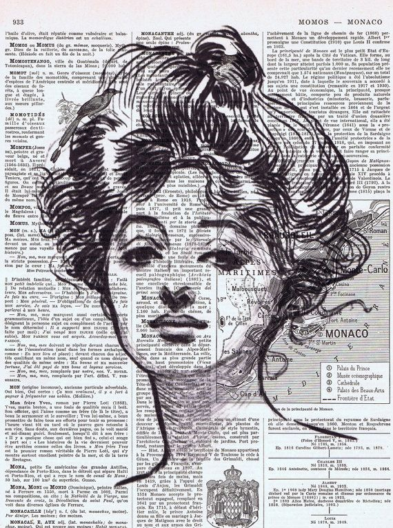 Portrait of a Gibson Girl; Altered Book Page