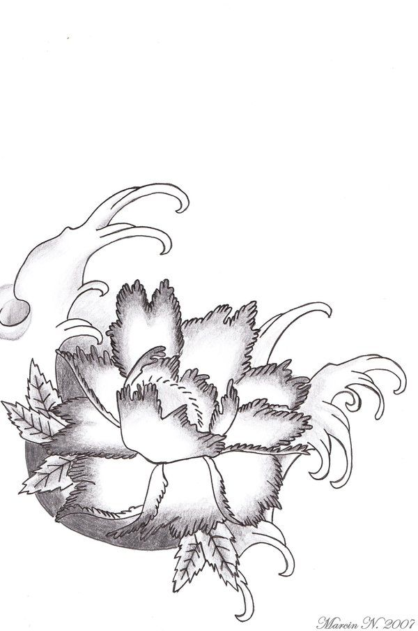 lotus flower drawings for tattoos | Flower Tattoo Art ...
