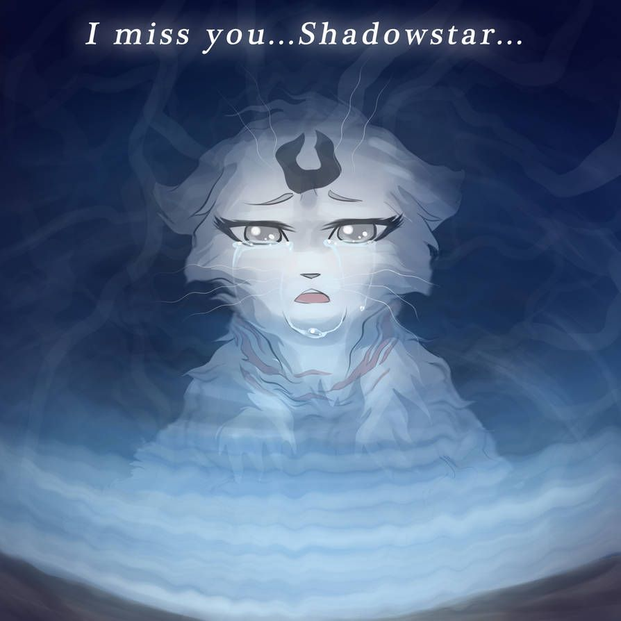 Miss You By Riverspirit456 With Images Warrior Cats