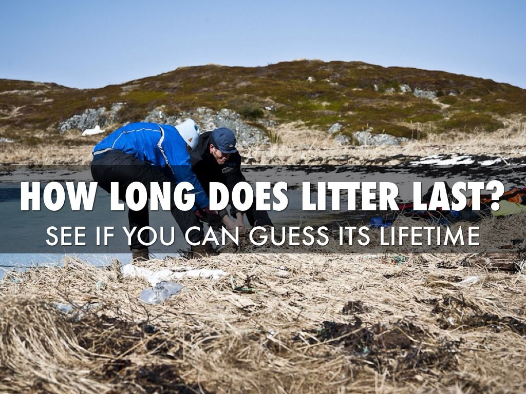 Rubbish is rubbish! Be mindful of your litter