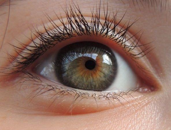 Cool Hazel Eyes Professional Clothing Seasonal Color