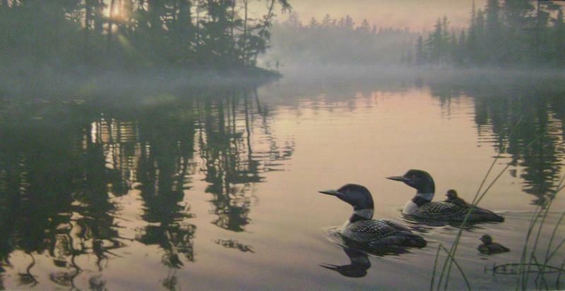 Dan smith wildlife art art original paintings