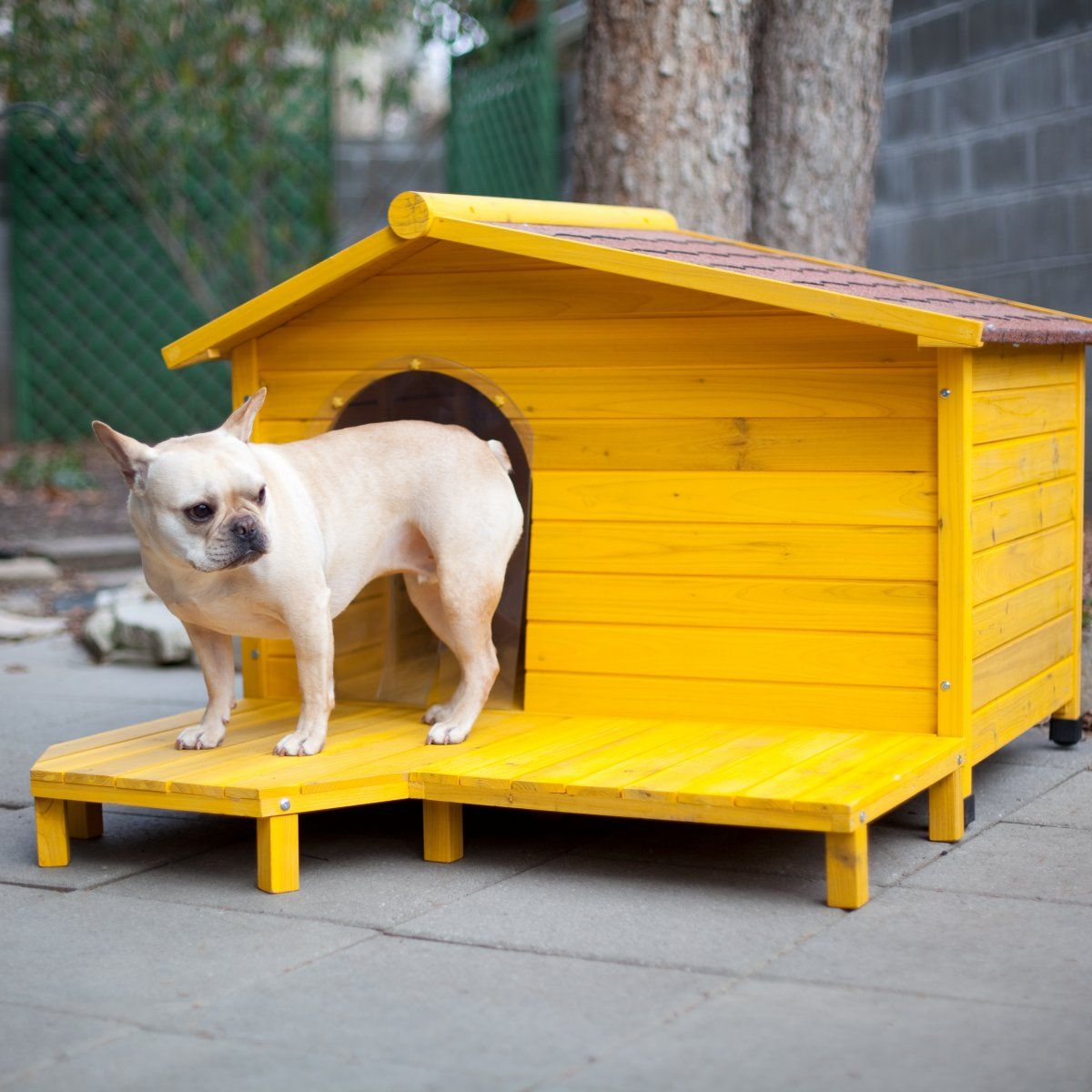 Tuscan Style Dog House Cute yellow dog house Dog