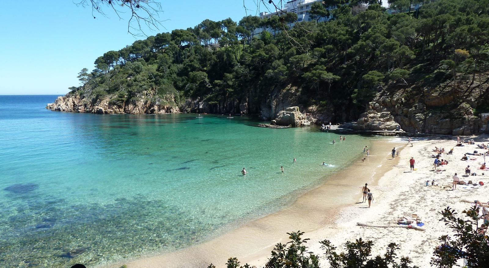 Best Spain Beaches Beach Travel Destinations Travel Destinations Beach Beach Trip Beach