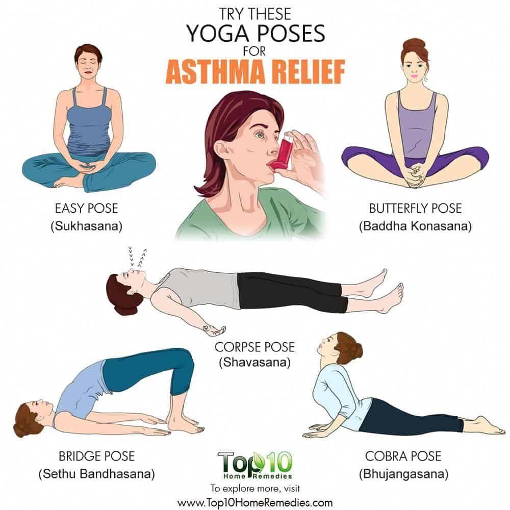 Yoga for Asthma 50 Exercises for Relief   eMediHealth   Asthma ...