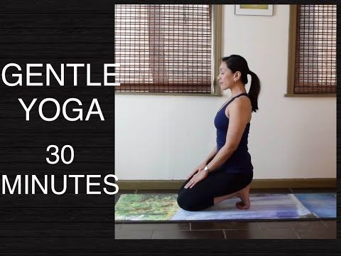 gentle yoga for all levels  seated poses and stretches