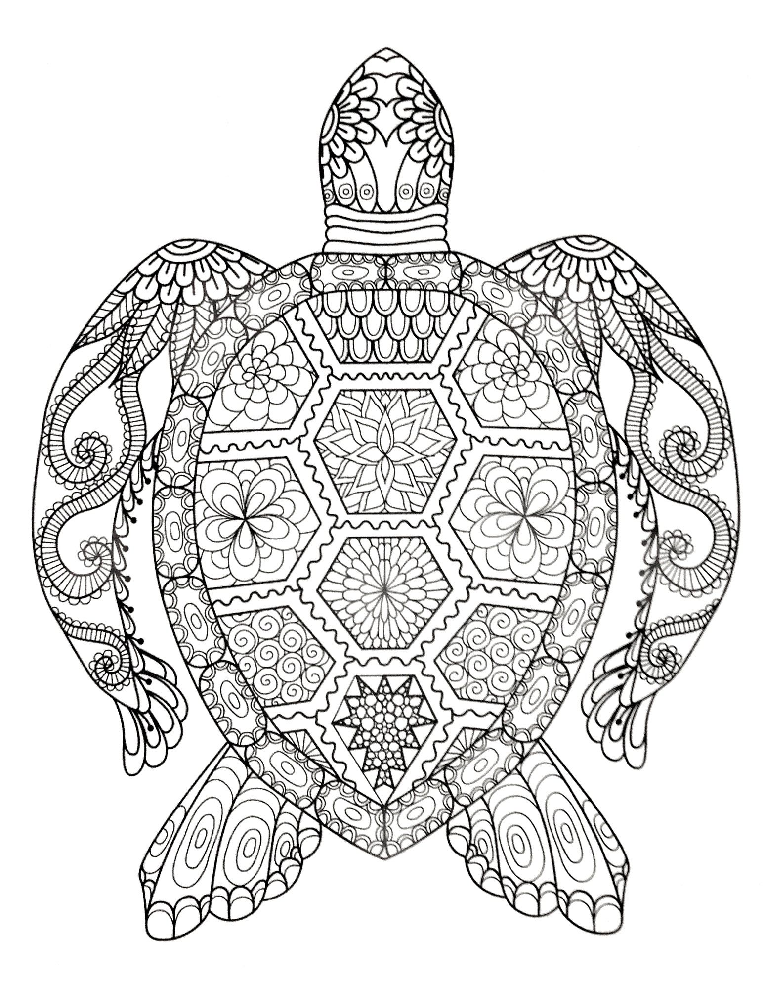 Pin By Michelle Schmidt On Coloring Pages With Images