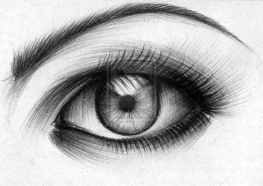 Drawings hledat googlem drawings pinterest for Cool pen drawings
