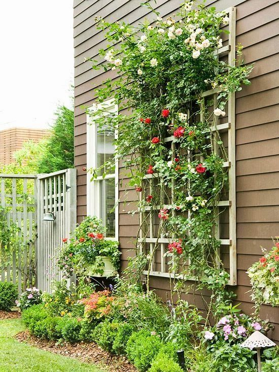 landscaping with trellis 20 awesome diy garden trellis projects gardens diy trellis and