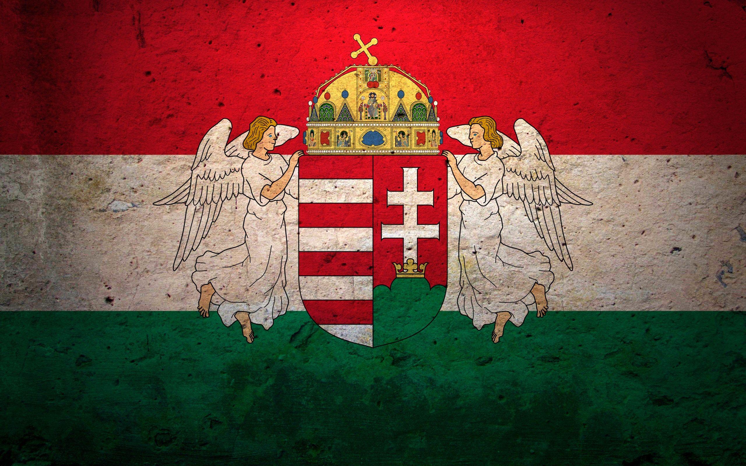 Ngos Equal Jus Eu Hungarian Flag Hungarian Hungary