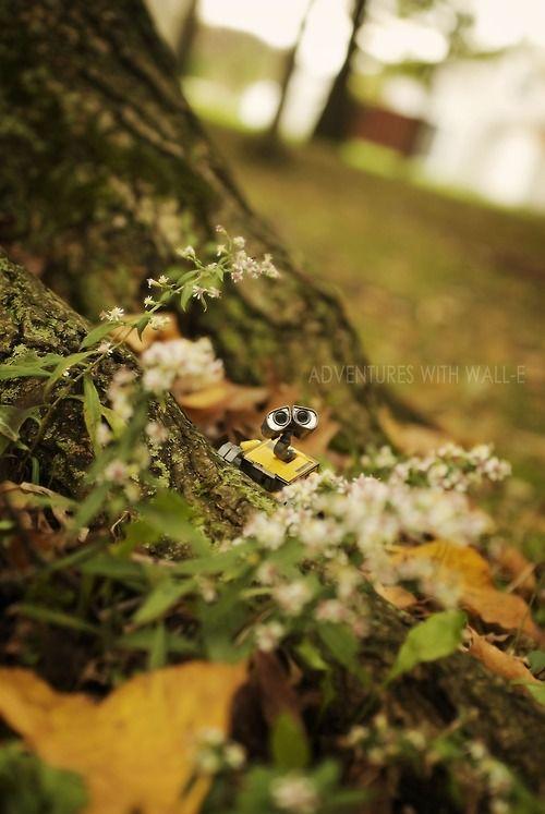 Autumn adventures.