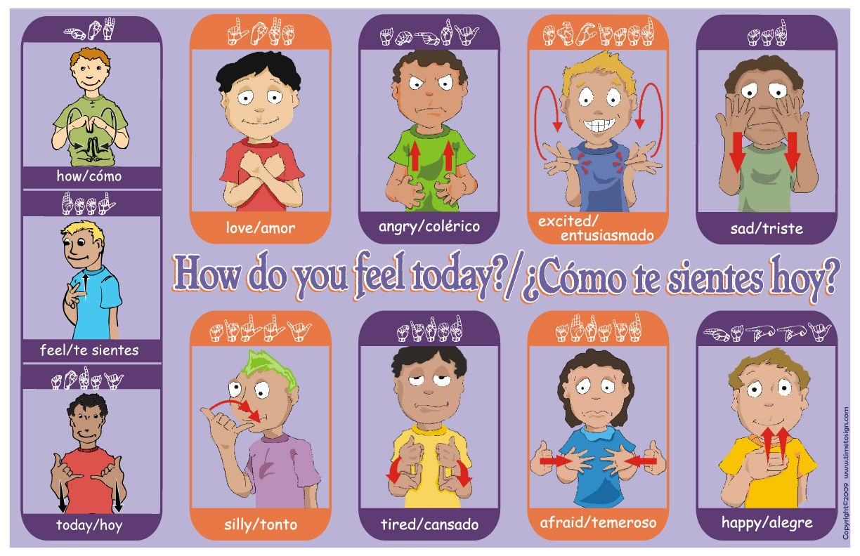 Emotions In Sign Language Emotions Poster