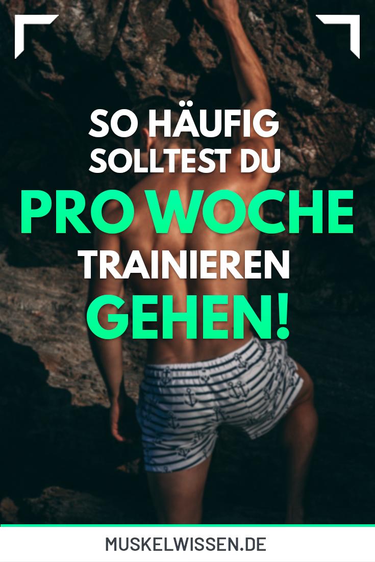 Trainingsplan Muskelaufbau: In nur 3 Schritten zum Erfolg! | MuskelWissen   - Fitness, Ernährung und...