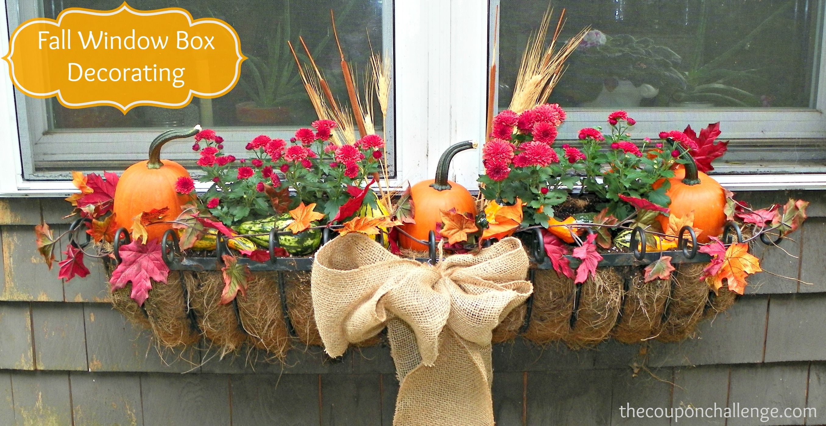 Elegant fall window box decorating flowersforwindowboxes for Autumn window decoration