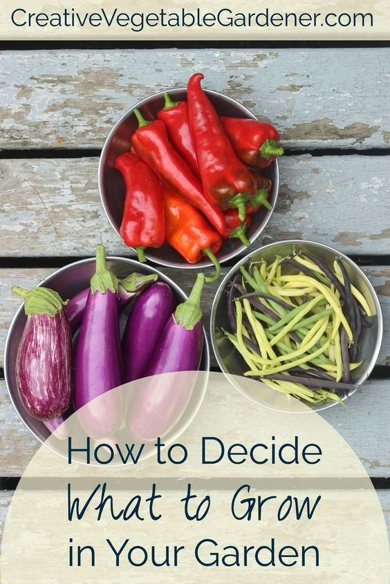 Creative vegetable gardener looks at cooking and shopping habits to help you decide what to grow this year
