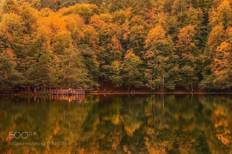 Autumn Colars in Yedigoller by gokhanuysal2001