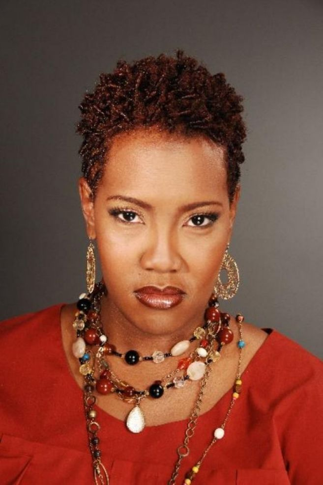 Natural Coiffures African American Hair   African american hair ...