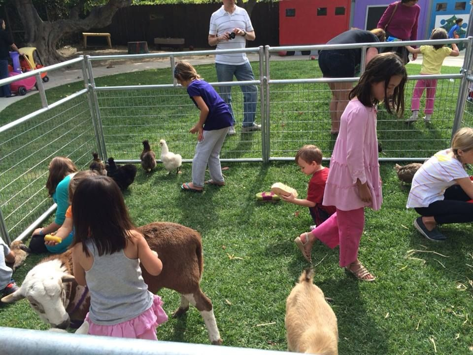 FarmFriends_PonyRides_2 Zoo animals, Mobile petting zoo, Zoo