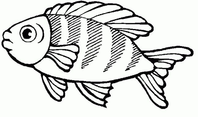 Pin By Heidi O Neill On Teaching Fish Coloring Page Animal Coloring Pages Coloring Pages