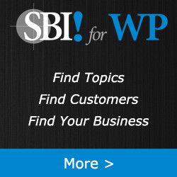 Anyone Can Build a Website. Few Become Profitable Online Businesses. What's the Difference?   SBI!