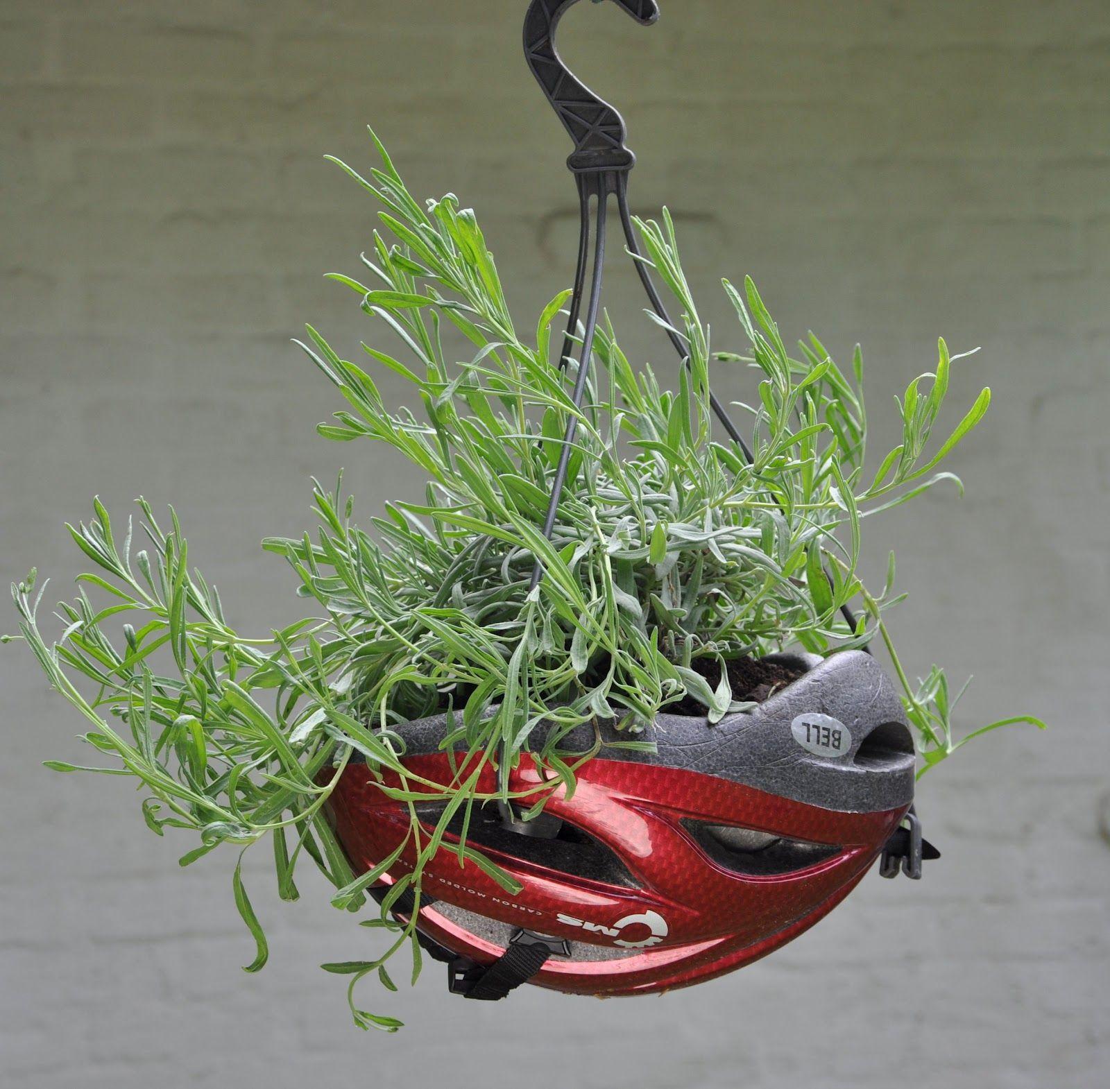 Helmet flower pot