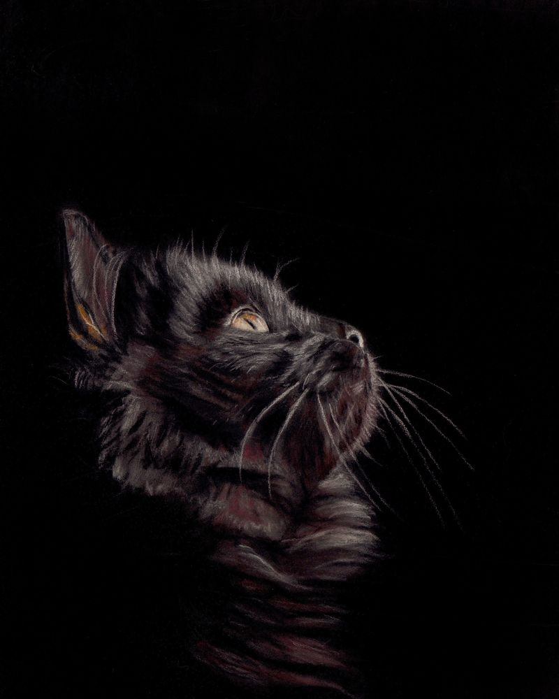 S 'Night Watch' by Sue Ziegler. 8x10 Pastel on Pastelmat.