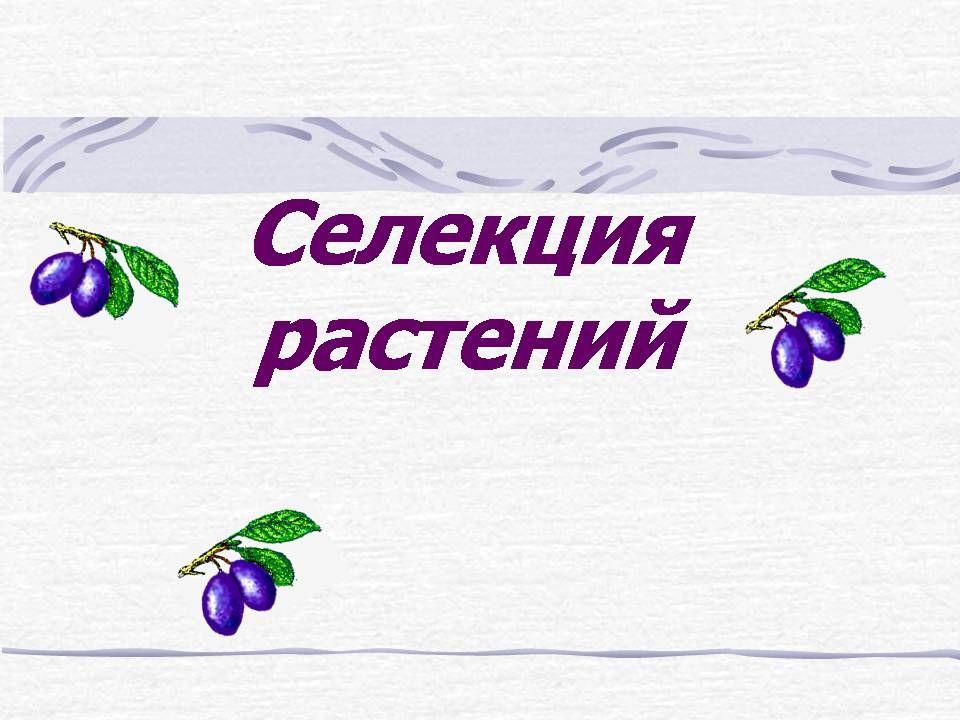 Решебник природознавство 5 класс т.красильникова т.котик