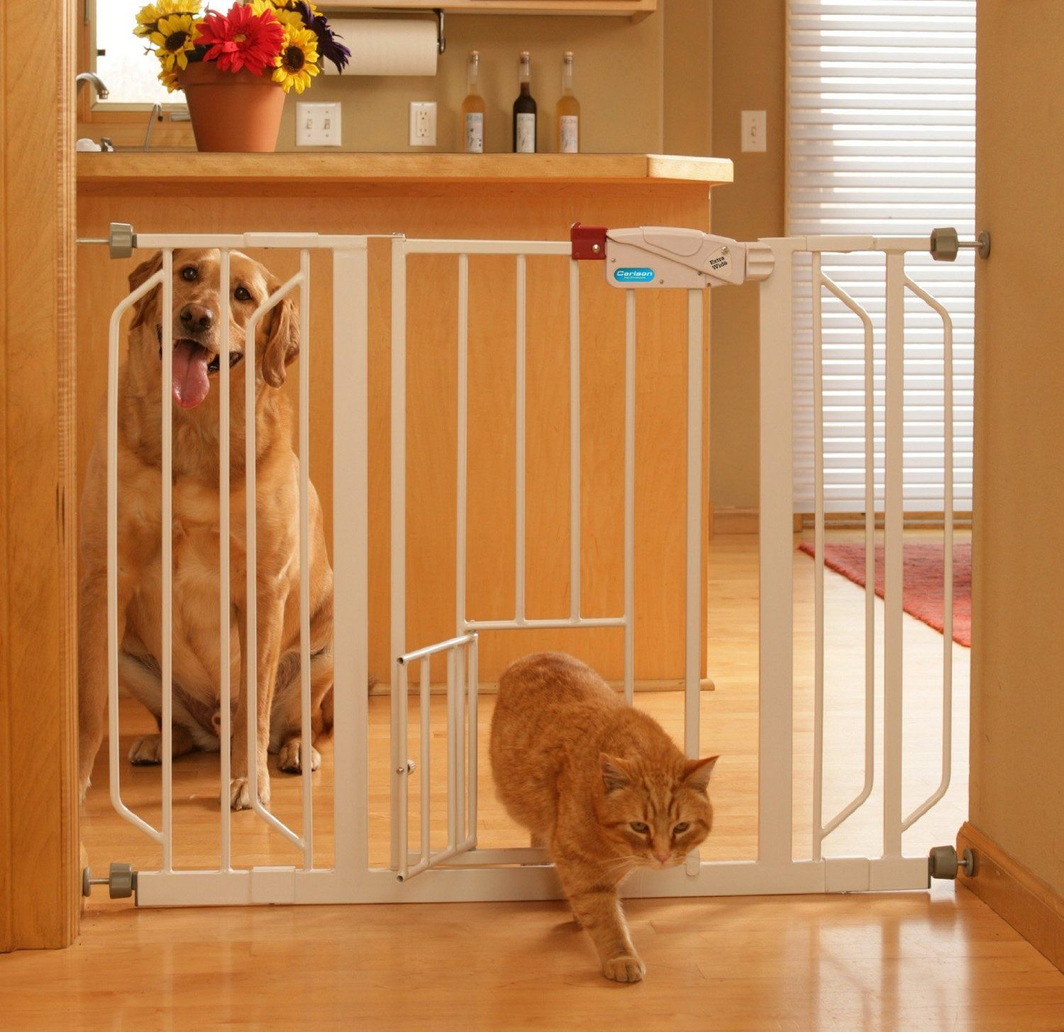 Carlson 0930PW Extra Wide Walk Thru Gate With Pet Door, White    Http://bestbabysafetygates.com | Places To Visit | Pinterest | Pet Door, Pet  Products And ...
