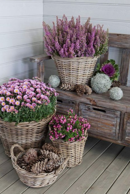 Photo of 15 Unique and Beautiful Container Garden Ideas – Sanctuary Home Decor