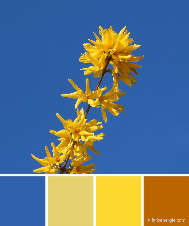 Wandfarben Farbpalette Gelb: Pin Von Nany Velazquez Auf Arte