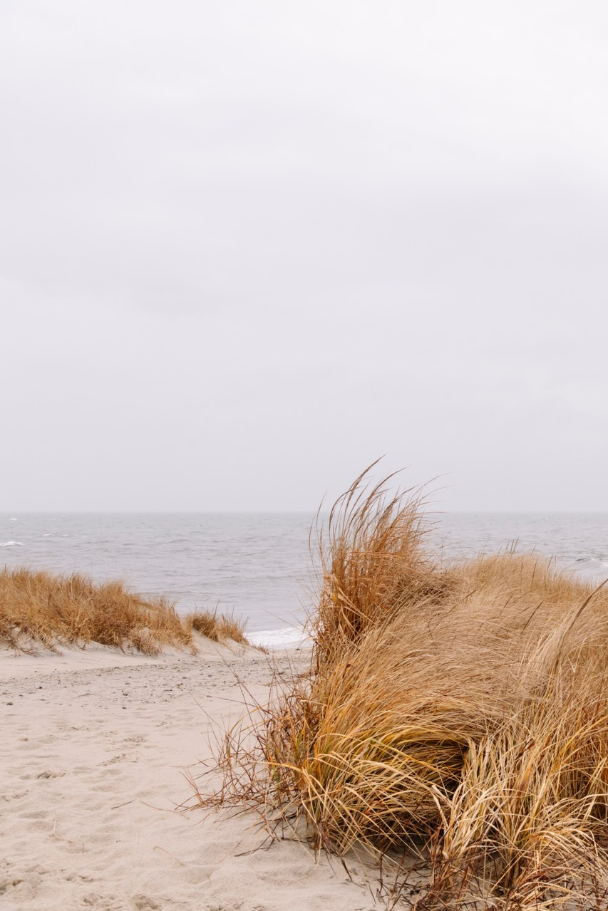 All paths lead to the sea. Just like this, @laurathistle. #TellOn #prettypics