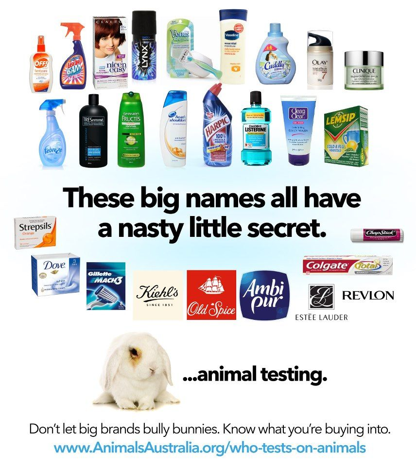 common goods testing The bans follow vigorous campaigning by peta,  unfortunately, there's no ban on testing cosmetics or household products on animals in the us,.